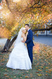 Étreinte de jeunes mariés sur une promenade dans la campagne pour une promenade Image libre de droits