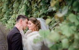 Étreintes d'offre entre les nouveaux mariés renversants Images libres de droits