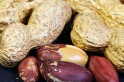 Étroitement arachides Photographie stock