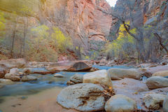Étroits en Zion National Park, Utah, Etats-Unis Photographie stock libre de droits