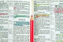 Étude de bible images stock