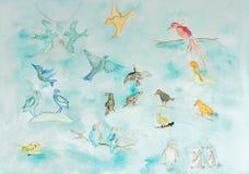 Étude du genre différent d'oiseaux Photo libre de droits