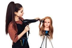Étudiant de coiffeuse de femme étudiant sur la tête de mannequin photographie stock libre de droits