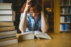 Étudiant mûr étudiant dans la bibliothèque photo stock