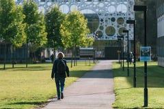 Étudiant universitaire à une université à Odense, Danemark Images libres de droits