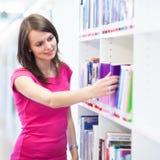 Étudiant universitaire assez jeune dans une bibliothèque image stock