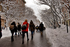 Étudiants à l'Université de Columbia dans la neige Photographie stock