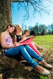 Étudiants étudiant dehors Photographie stock libre de droits