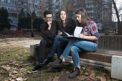 Étudiants d'adolescent de lycée dans le terrain de jeu Photographie stock libre de droits