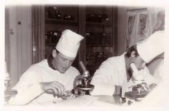 Étudiants d'institut médical de Vitebsk au département de l'histologie Photo libre de droits