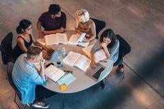 Étudiants de métis étudiant ensemble Photographie stock libre de droits