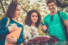 Étudiants en parc de ville Photos libres de droits