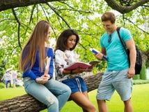 Étudiants en parc de ville Photo stock