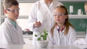 Étudiants et professeur avec l'usine au cours de Biologie banque de vidéos