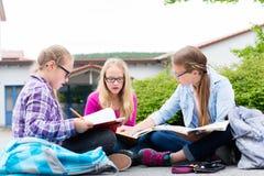 Étudiants faisant des devoirs pour l'école ensemble Photographie stock