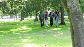 Étudiants heureux marchant sur l'herbe banque de vidéos