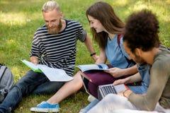 Étudiants joyeux travaillant ensemble sur des hometasks Photo stock