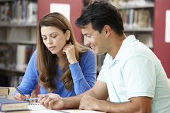 Étudiants mûrs travaillant dans la bibliothèque Image libre de droits