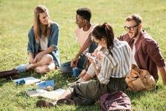 Étudiants multi-ethniques étudiant ensemble Images stock