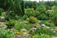 Étudiants s'exerçants dans la conception de paysage dans un jardin botanique Belles centrales images libres de droits