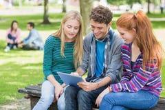 Étudiants universitaires à l'aide de la tablette dans le parc Images stock