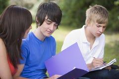 Étudiants universitaires étudiant à l'extérieur Photo stock