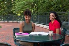 Étudiants universitaires étudiant sur le campus Photographie stock libre de droits