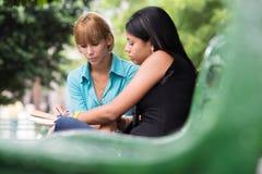 Étudiants universitaires étudiant sur le manuel en stationnement Photos libres de droits