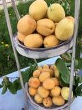 Événement extérieur de célébration avec des abricots Photographie stock libre de droits
