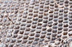 Évacuez la ruche photographie stock libre de droits