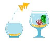 Évasion sautante de poissons d'or de bocal à poissons à l'autre illustration simple de vecteur d'aquarium illustration libre de droits