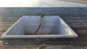 Évier d'échelles de poissons de scène d'océan images libres de droits