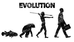 évolution Image libre de droits