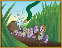 Éxodo de la hormiga Imagen de archivo