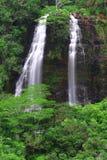 ʄ Ōpaekaʄ una cascata di Kauai Immagine Stock