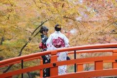 ËŠthe人参观秋天庭院在京都 免版税库存图片