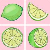 Ícone ajustado - fruta do cal Fotografia de Stock