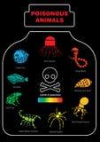 Ícone animal venenoso infographic ilustração stock