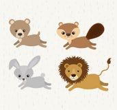 Ícone bonito ajustado dos animais selvagens dos animais Imagens de Stock