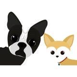 Ícone bonito dos desenhos animados do cão Imagens de Stock