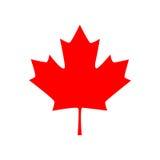 Ícone canadense da folha de bordo Ilustração do vetor Imagens de Stock
