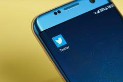 Ícone da aplicação de Twitter Fotos de Stock