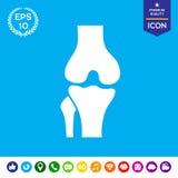 Ícone da articulação do joelho Fotografia de Stock