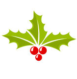 Ícone da baga do azevinho do Natal Foto de Stock Royalty Free