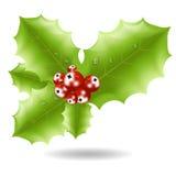 Ícone da baga do azevinho Vetor do símbolo do Natal Fotos de Stock Royalty Free