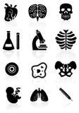 Ícone da biologia ajustado - preto e branco. Fotografia de Stock
