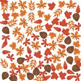 Ícone da cor das folhas de outono Elemento da ilustração feliz do dia da ação de graças Ícone superior do projeto gráfico da qual fotografia de stock