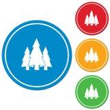 Ícone da floresta dos abeto Imagem de Stock Royalty Free