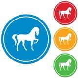 Ícone da silhueta do cavalo Imagens de Stock