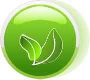 Ícone da tecla da ecologia Imagem de Stock
